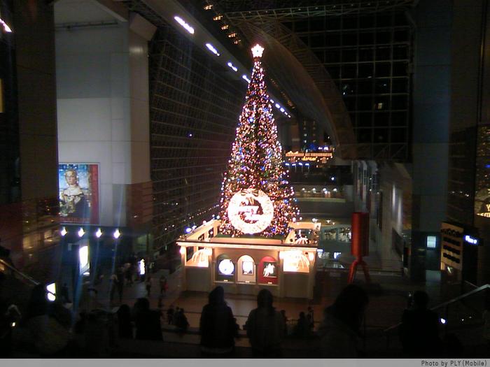京都駅のツリー。