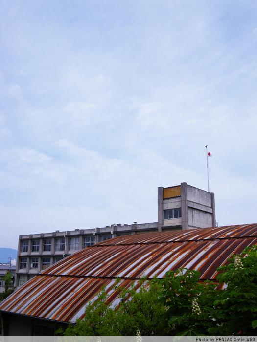 裏の小学校。