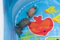 我が家のミシシッピニオイガメたち