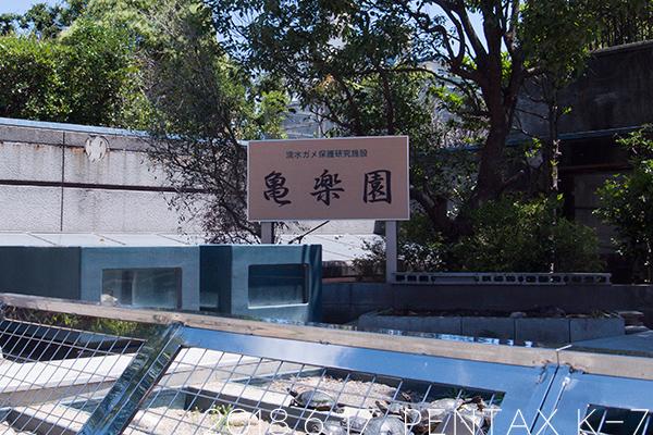 須磨海浜水族園の亀楽園