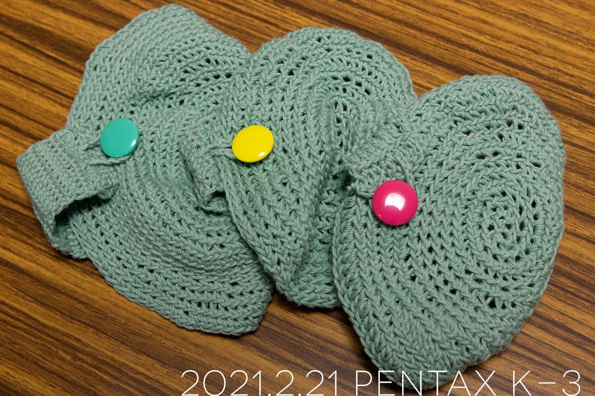 奥さん手編みの亀ニット